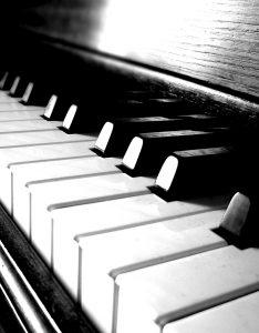 Klavijature 800